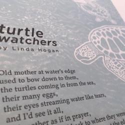 Detail of broadside: Turtle Watchers by Linda Hogan